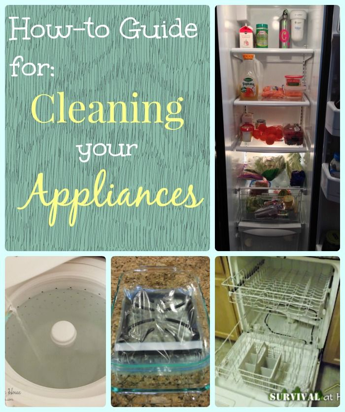Cleaning appliances will actually extend the life of your appliances. Check out these great tutorials for cleaning appliances.