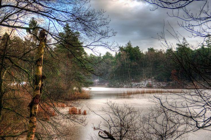 Winter by Watze D. de Haan
