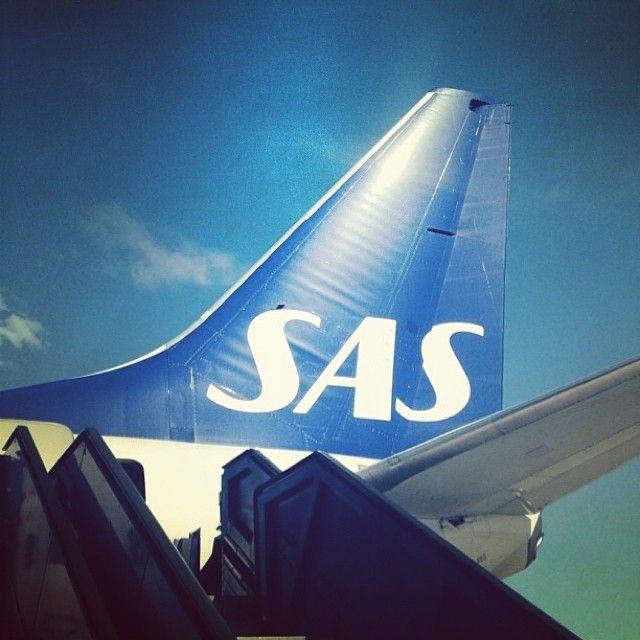 Shiny and blue, summer's here! #sas #flysas #scandinavian #icanflysas