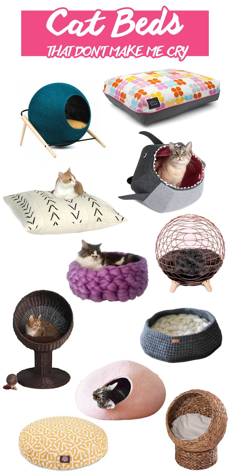 A guide to modern cat furniture, beds, supplies and scratching posts with a unique look that won't clash with your decor.
