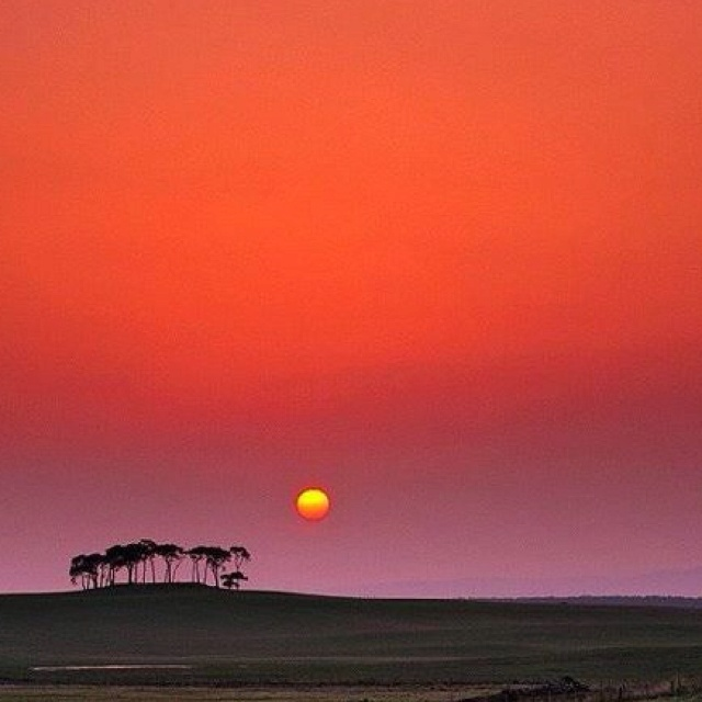 Africa...Lord, Send me !!!! Send me to the nations as my inheritance for you <3