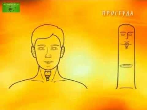 Хиромантия и Су-Джок терапия ч. 7 (простуда) - YouTube