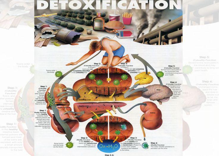 #Food #good for #detoxification