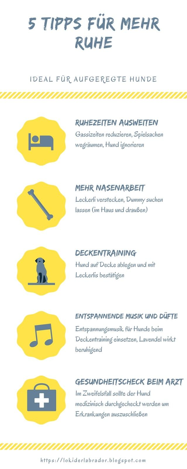 Aufgeregter Hund Infografik