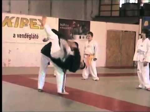 Hapkido Hungary