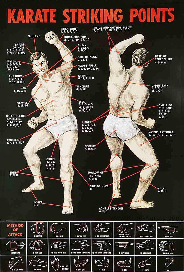 Karate Striking Points: I have this poster in my garage, next to my punching bag