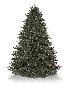 Small Artificial Christmas Trees | Balsam Hill