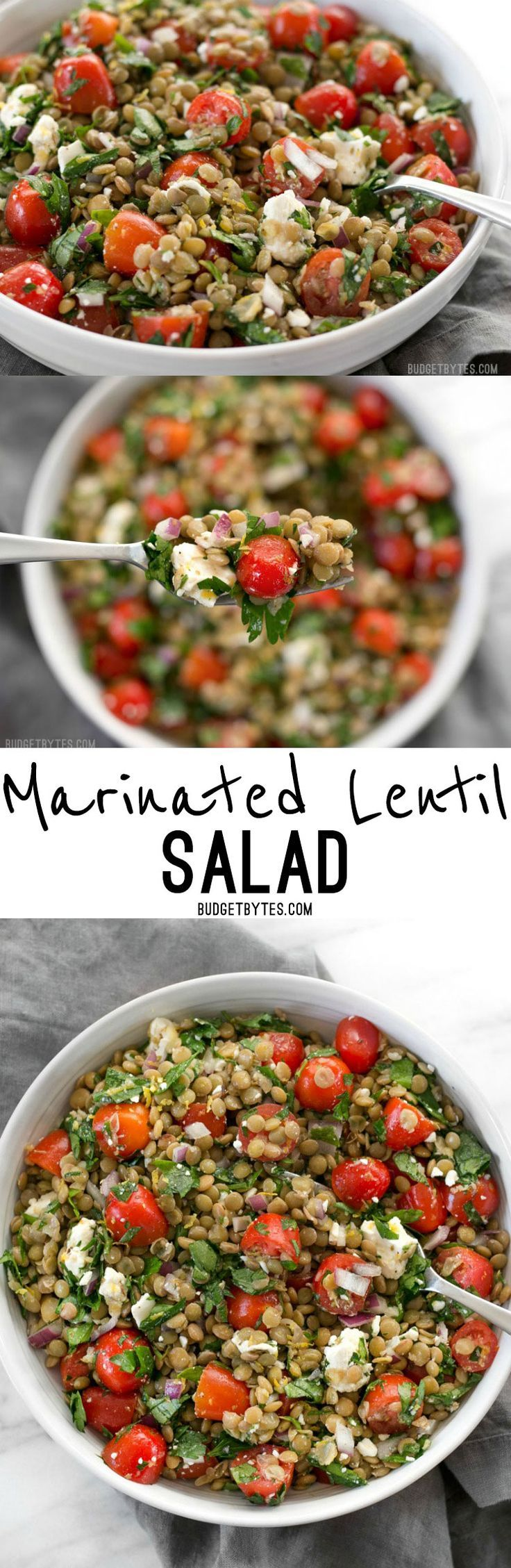 Marinated Lentil Salad is bright and flavorful, and infused with bold flavors like garlic and lemon. /budgetbytes/