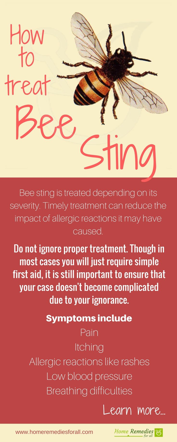 Treat bee stings with these effective home remedies