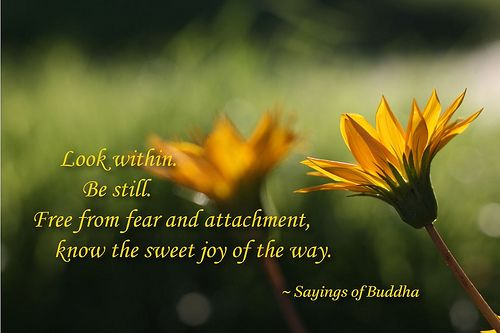 Buddhist sayings