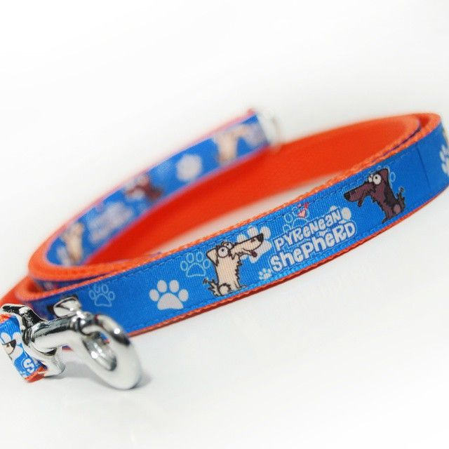 Vodítko od Blackberry | Leash by Blackberry #pyreneanshepherd #bergerdespyrénées #pyrenejskyovcak #newleash #leash #goodsfordogs #blue #orange #novevoditko #voditko #vecipropsy #modra #oranzova #byblackberry #odblackberry #news #novinka