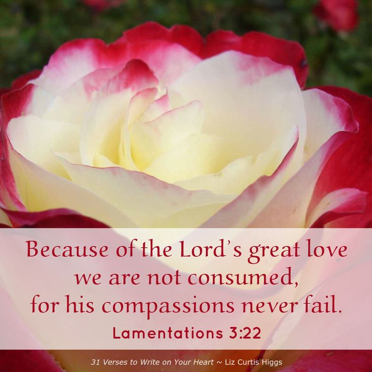 Chapter 30 ~ Great Love ~ 31 Verses to Write on Your Heart
