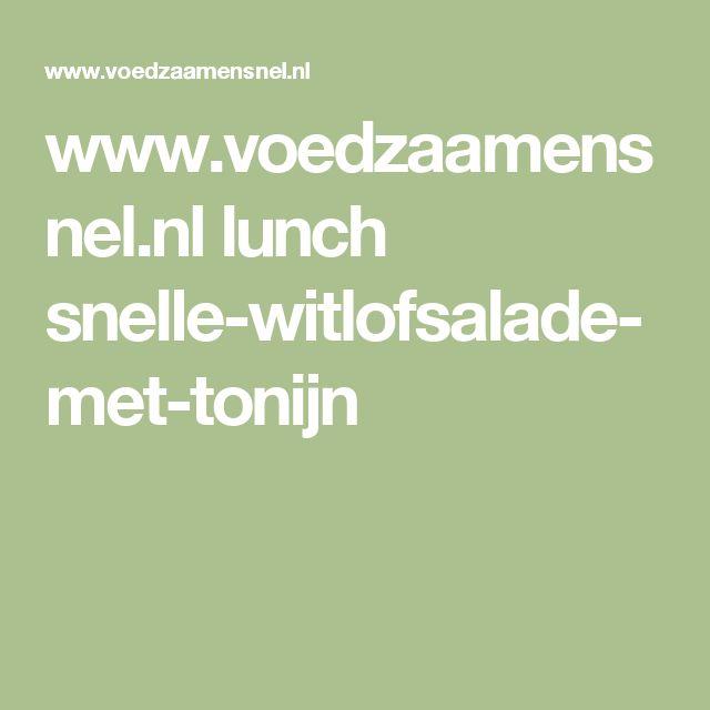 www.voedzaamensnel.nl lunch snelle-witlofsalade-met-tonijn