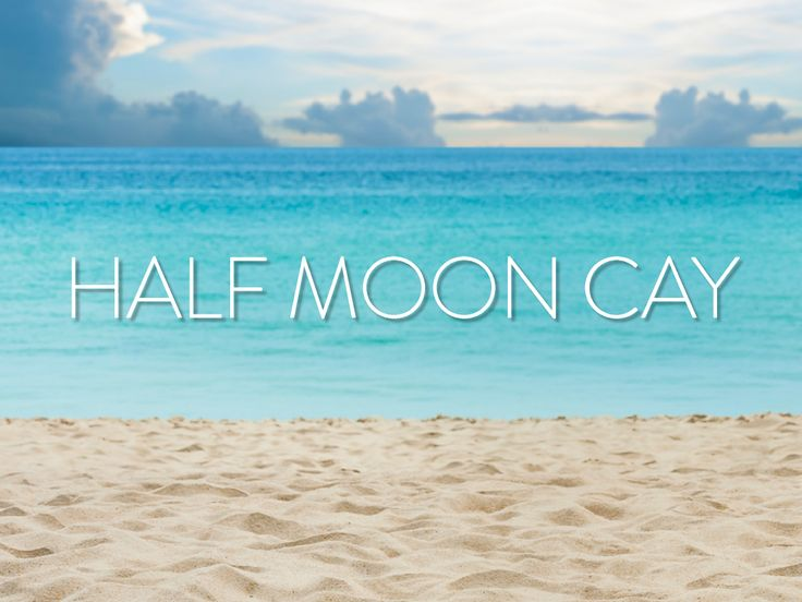 Half Moon Cay- Priviate Island for Carnival and Holland America.   #HAL #Carnival #CarnivalCruise #HollandAmerica @Holland America Line @Carnival Cruise Lines   #Bahamas #Cruise #Beaches #Warm #Sand #BeachLife #TravelIdeas #TravelInspiration #Cruising #Vacation #Travel