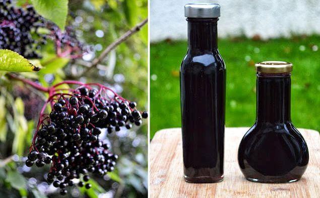 Sirop din fructe de SOC și GHIMBIR - cel mai puternic medicament ANTIVIRAL natural! | La Taifas