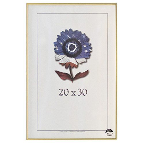 20 X 30 Metal II Picture Frame Gold ** Want to know more, click on the image.