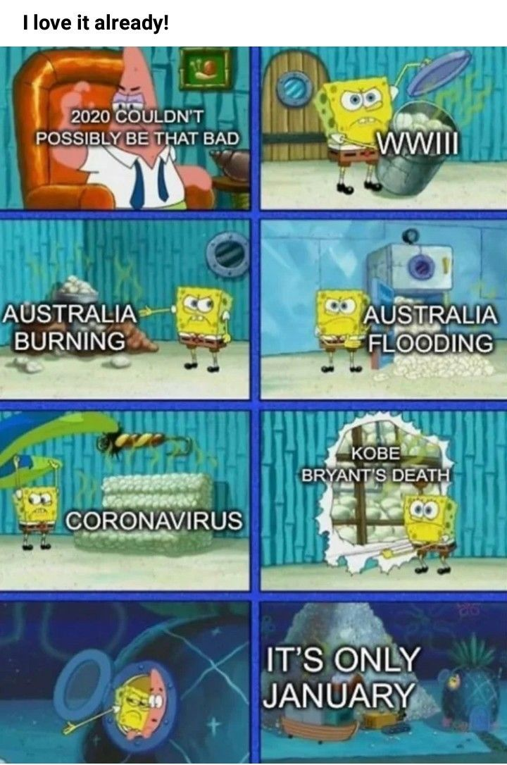 Pin by Paige Webster on lol in 2020 Funny spongebob