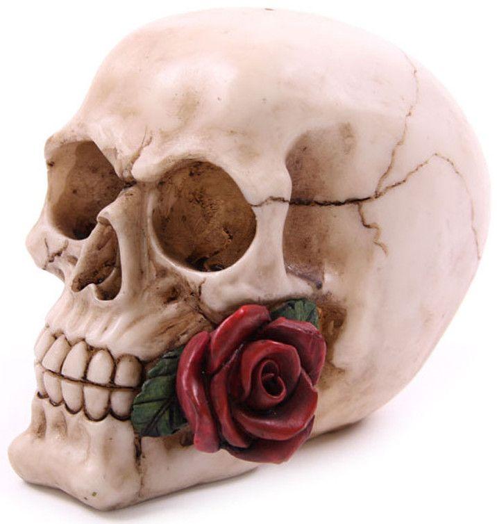 Figura Calavera con Rosa #skull #rose #decor #decoracion #gotico #goth #xtremonline