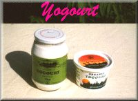Actually the best yogurt I've tasted! Organic, Ontario made, and comes in a glass jar! You can return your jar and they will reuse it! Another bonus- the label is made of soy ink...