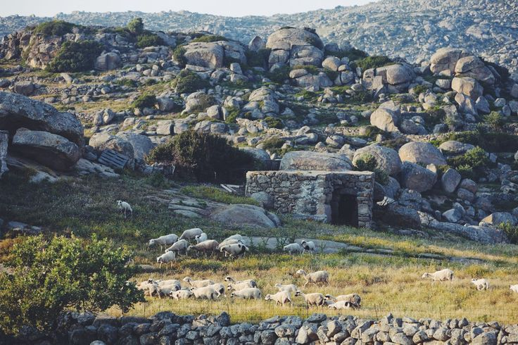 Volax village, Tinos #tinos #greece #cyclades