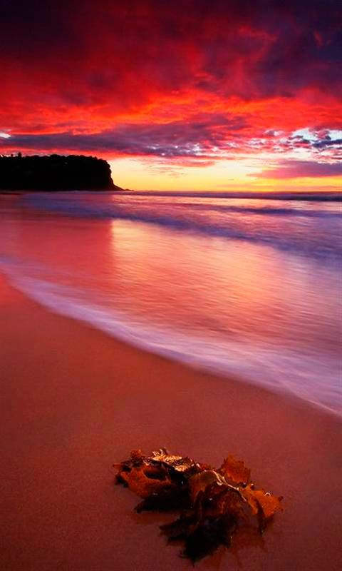 20 Best Beaches Images On Pinterest Beach Ocean Beach And Paisajes