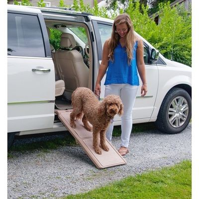 van ramp, car ramp, dog ramp, senior dog ramp, this ramp will help you get your dog in and out of a van or vehicle with side openings. Save your back and take your older dog and about with you.