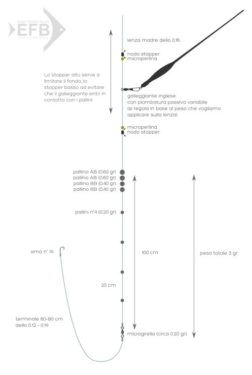 Montatura con galleggiante inglese scorrevole   Elba Fishing Blog