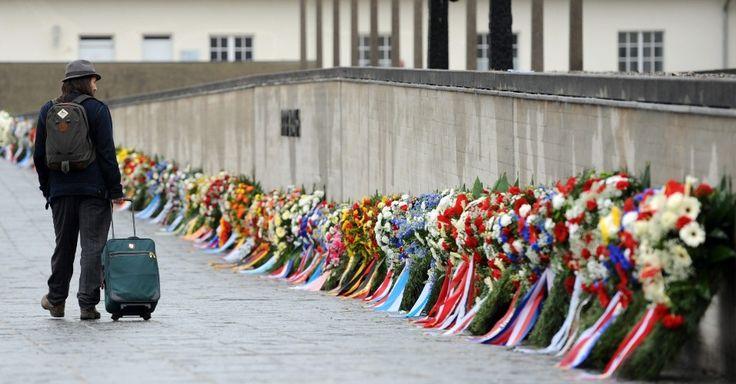 20150503 - Homem caminha ao longo de muro com coras de flores que homenageiam o 70º aniversário da libertação do campo de concentração de Dachau, perto Munique. Em um discurso para 120 sobreviventes idosos de 20 países e seis soldados norte-americanos que ajudaram a libertar as vítimas, a chanceler alemã Angela Merkel disse que os alemães nunca vão se esquecer dos ''horrores'' do nazismo. PICTURE: Andreas Gebert/EFE/EPA