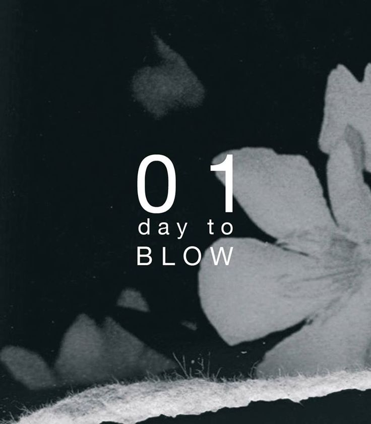BLOW Photo Magazine // issue 12 'monochromes' countdown // 01 day to BLOW 12 launch at @fotofestlodz pre order here and get complimentary BLOW issue 12 cover poster while stocks last http://blowphoto.com/issues/issue-12 #BLOWPhotoNews‬ #BLOWissue #monochromes