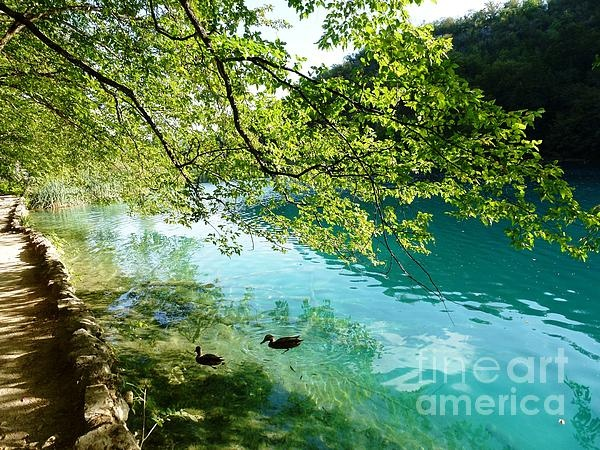 Plitvice Lakes: Plitvice Lakes, Mornings, Photography