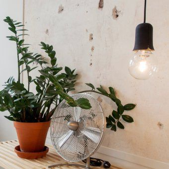 Popular Puik Art H ngeleuchte Tulight FassungLampen LeuchtenKabelDschungelSt dtischDrinnen Drau en