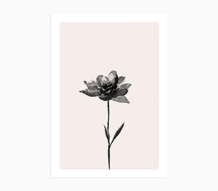Fern / Olive Branch / Peony art prints - Set of 3