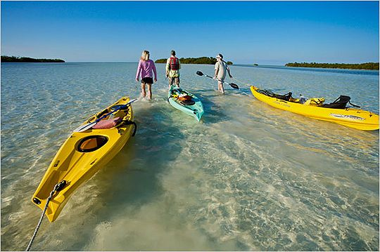 5 Places to Kayak or Canoe in South Florida