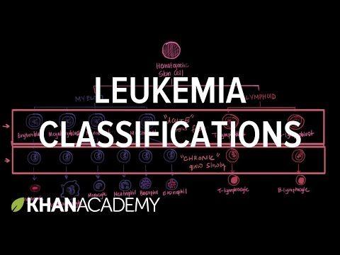 Leukemia classifications | Hematologic System Diseases | NCLEX-RN | Khan Academy - YouTube