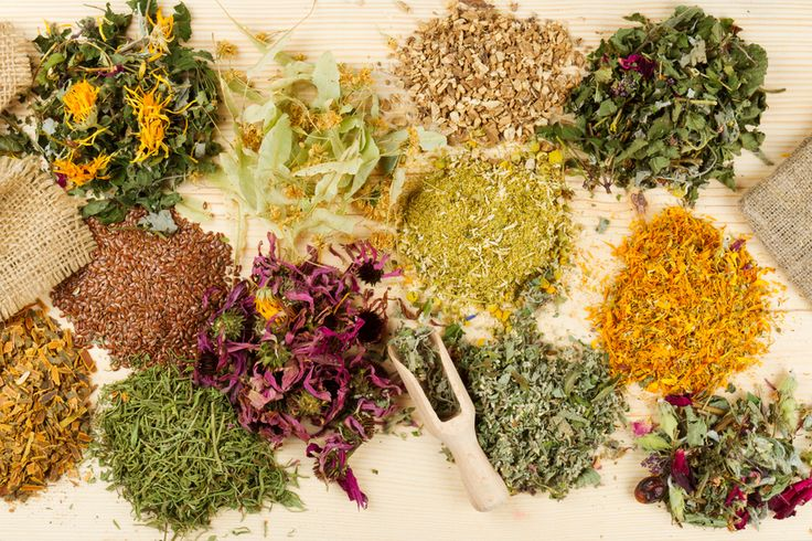 Do you know that medicinal herbs are actually REALLY effective? And that you can easily grow them in your garden? Medicines for FREE, what?! Read our blog, it's full of info and advice from qualified professional Herbalists!