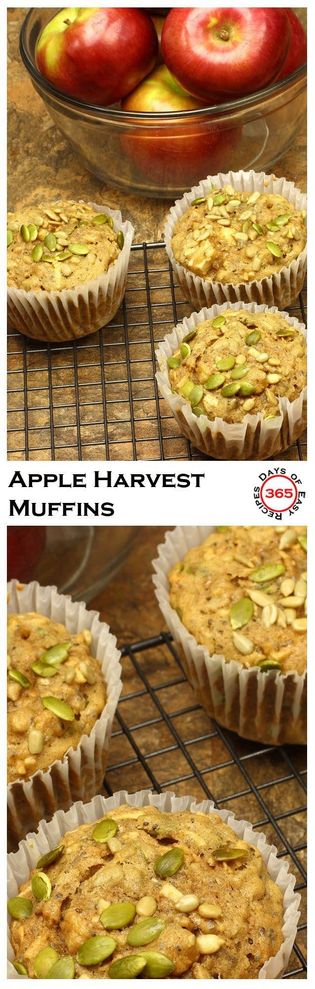 These Sugar Free Harvest Apple Muffins are packed with chia seeds, pumpkin seeds and sunflower seeds   365 Days of Easy Recipes