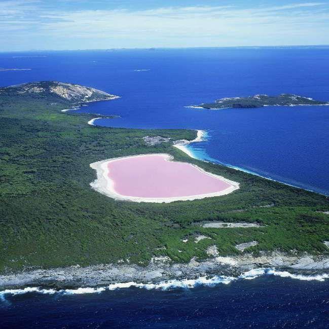 """El agua del lago Hillier, situado en """"Middle Island"""", Australia Occidental, ¡tiene la sorprendente característica de ser rosa! ¡Un fenómeno único en el mundo que aún no ha podido explicar nadie! Esta masa de agua, de 600 metros de largo, fue descubierta en 1802 por el explorador británico Matthew Flinders. #hillier #lago #rosa #australia #color http://www.pandabuzz.com/es/anecdota-del-dia/lago-rosa-australia"""