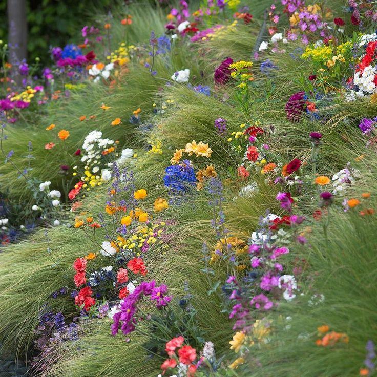 Flowers flowers everywhere!