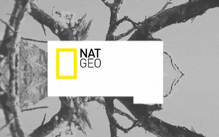 Natgeo TV Branding by DHNN