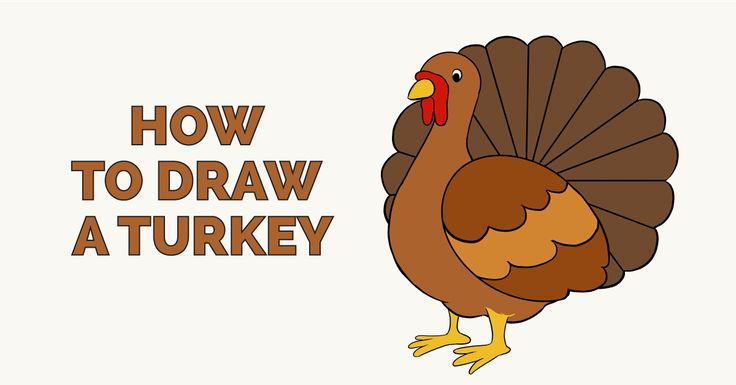 Learn How to Draw a Turkey: Really Easy Step-by-Step Drawing Tutorial for Kids and Beginners. #turkey #drawing #tutorial See the full tutorial at https://easydrawingguides.com/how-to-draw-a-turkey-really-easy-drawing-tutorial/