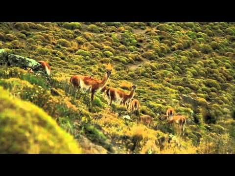 Promotional video about Chile.   Come to Chile, we are waiting for you!!