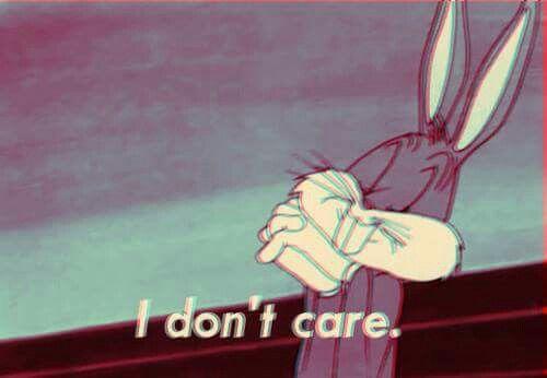 ♡ babybayleyy ♡ box bunny no me importa i dont care