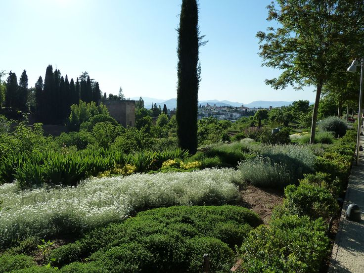 M s de 25 ideas incre bles sobre jardines arabes en for Decoracion jardin granada
