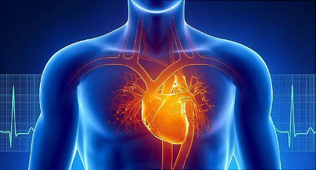 Slideshow: How Heart Disease Affects Your Body | WebMD
