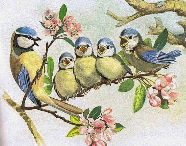 O povo gostou,então trouxe mais figuras vintage pra vocês!  Hoje só de pássaros,são lindas!  Beijos  Soraya