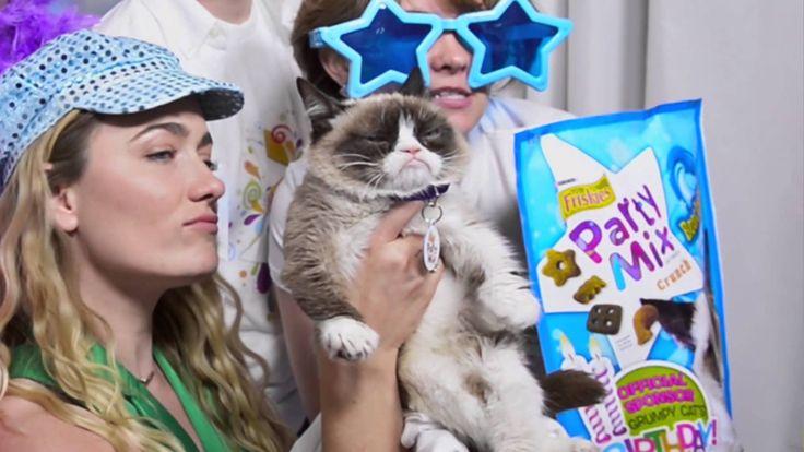 Grumpy Cat's Birthday Party in NYC! - Friskies® Party Mix Cat Tre -Video, Friskies celebrates Tardar Sauce's Terrible Two birthday part #GrumpyCat #Tard #TardarSauce