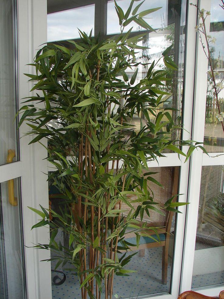 Bambusbaum Bambus Naturstamm 180cm getopft Kunstpflanze Dekobaum Kunstbaum Baum