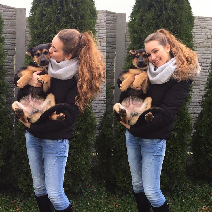 Welcome home #Bart #puppy #germanshepherd