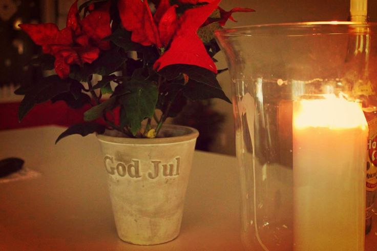 God Jul !!!! :) Winter