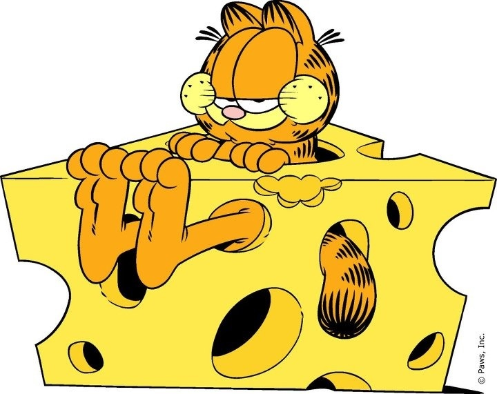 Garfield is so COOL...